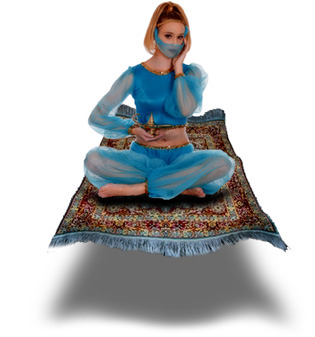 Genie Model on Carpet